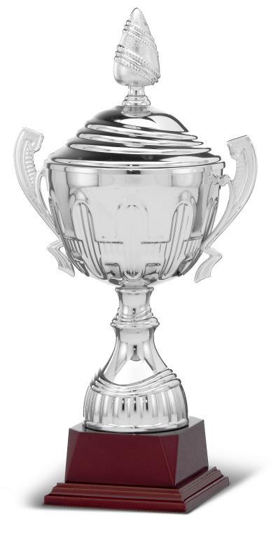 Copa Combinada Dorada y Plateada Cisus 28,5 Cm 100 mm