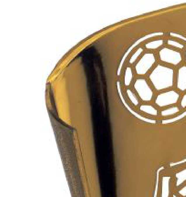 Copa Cody Cuerpo de Olivo Bronce 19 cm