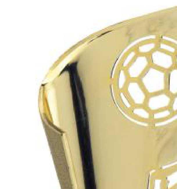 Copa Cody Cuerpo de Olivo Oro 19 cm