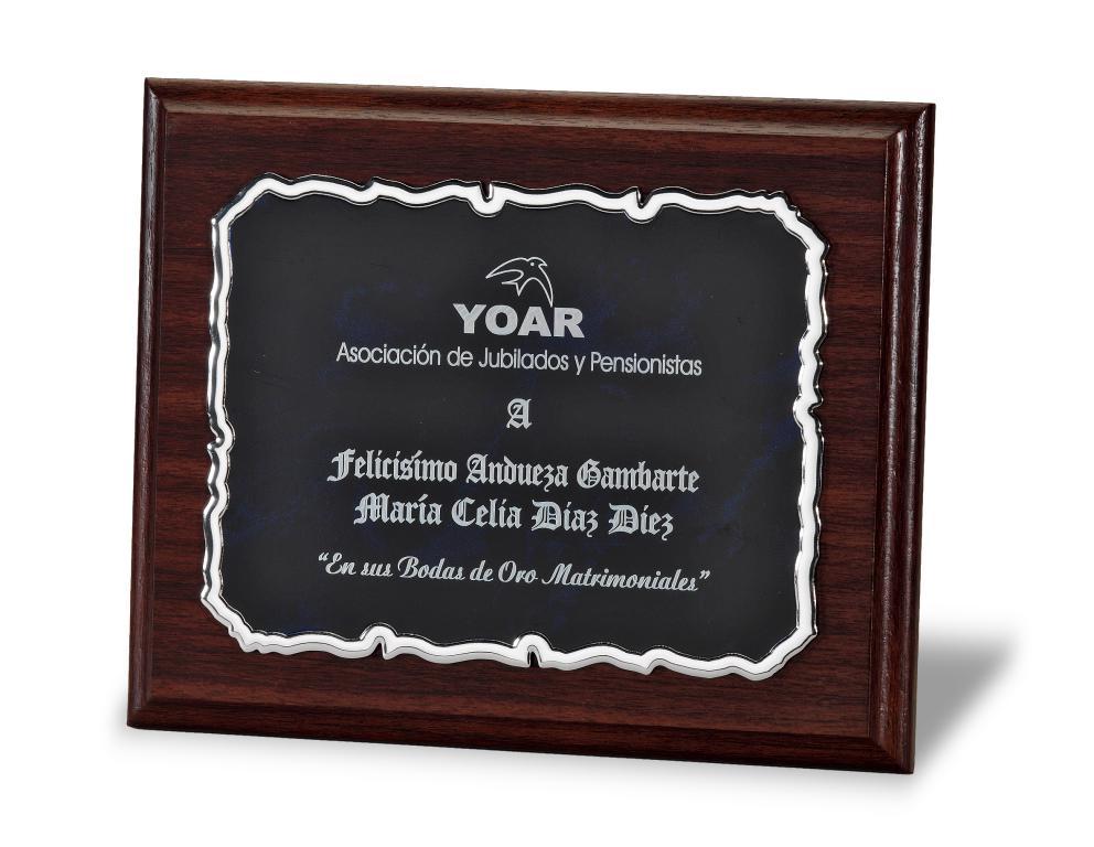 Placa Idola Homenaje de Aluminio Plateada Total 29x23 cm Azul Metal 23x18 cm Metal 20X15cm Total 24x29 cm Metal 16x12 cm Total 21x17 cm