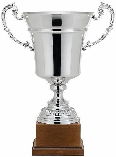 Copa Aralia Plata Clásica Punteada