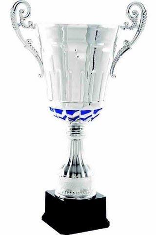 Copa Azul y Plateada de Calidad