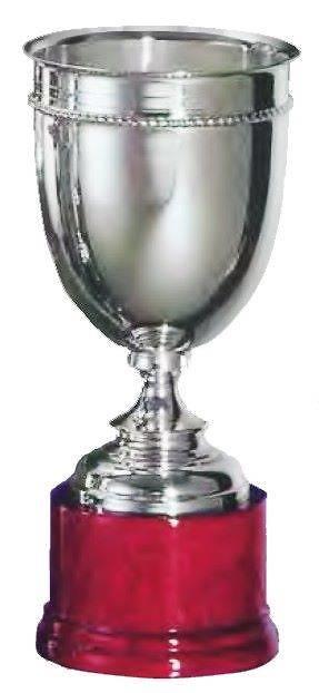 Copa Lupulus Estilo Trenzado Plata