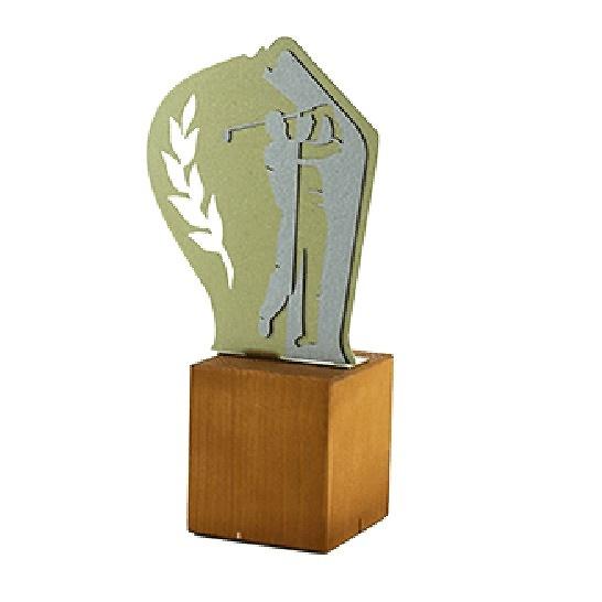 Trofeo Caldeliñas de Golf