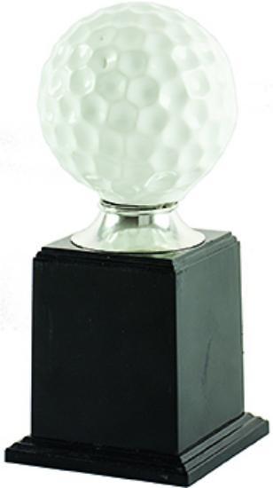 Trofeo Campobecerros de golf