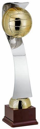 Trofeo Colquico Bicolor Voley