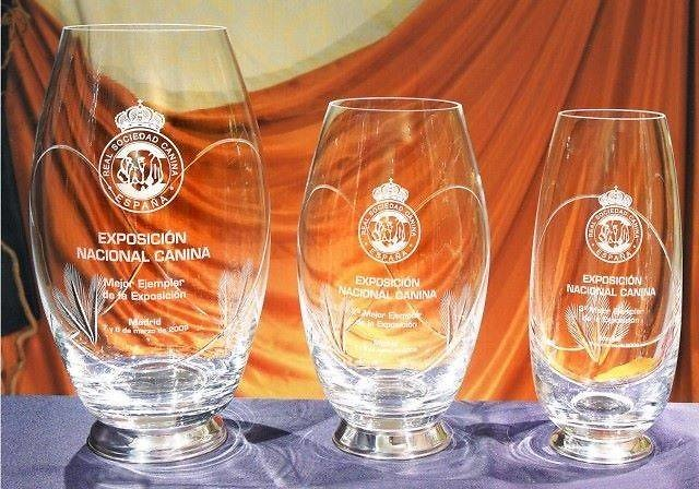 Trofeo Comores Florero Oval Cristal