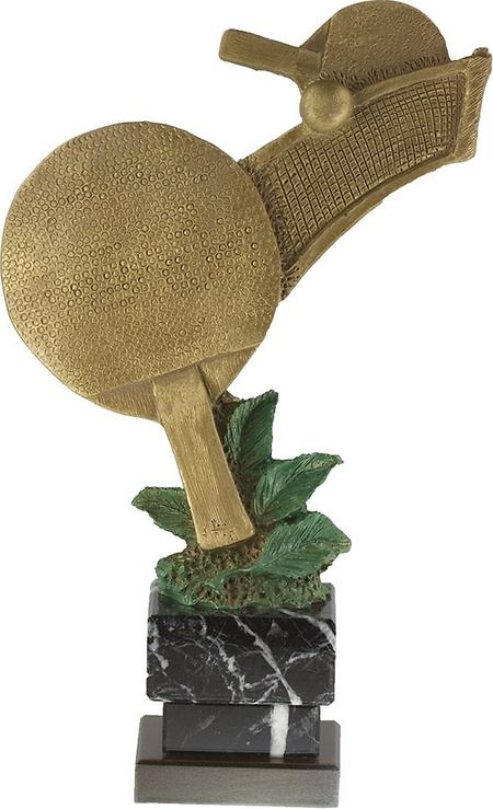 Trofeo Maroa Ping-Pong