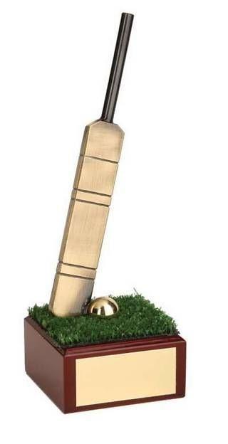 Trofeo críquet bate