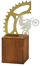 Trofeo motorista metalizado