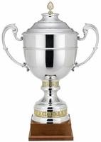 Copa Abedul Bicolor