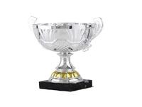 Copa Amlyn oro y plata