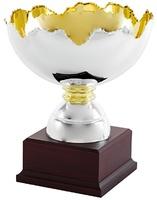 Copa Génova Plateada