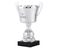 Copa Hertha Campana y Cuerpo Art