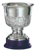 Copa Jacinto Ramas Plata