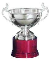 Copa Laburnot Línea Trenzado Plata
