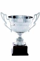 Copa Picardie Plateada con Asas