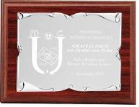 Placa Eryx Homenaje de Aluminio Plateada