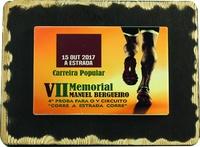 Placa Trofeo de Madera rectangular personalizable a Color