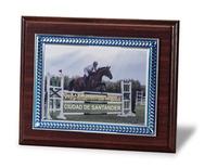 Placa de homenaje con borde azul y hojas en aluminio
