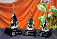 Trofeo Acipawa Gota Agua