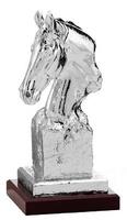 Trofeo Asclepios Busto Caballo
