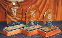 Trofeo Beseki Cristal Oval Transparente