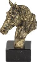 Trofeo Canagua Caballos