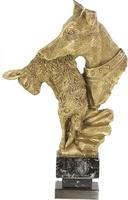 Trofeo Caza Paez para Galgos