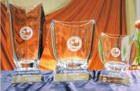 Trofeo Dorze Cristal Liso Peana