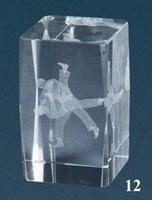 Trofeo Lozoya Cubo de Cristal Judo
