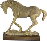Trofeo Palavecin Caballos