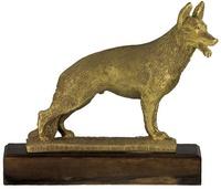 Trofeo Teques para Perros