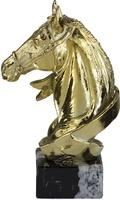 Trofeo cinta de caballo