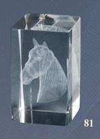 Trofeo de Hipica, caballos Lozoya cubo de cristal
