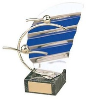 Trofeo natación competición