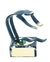 Trofeo natación