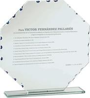 Trofeo personalizable de Cristal Arcelia
