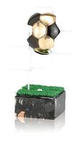 Trofeo red de futbol