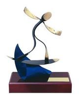 Trofeo surf surfista